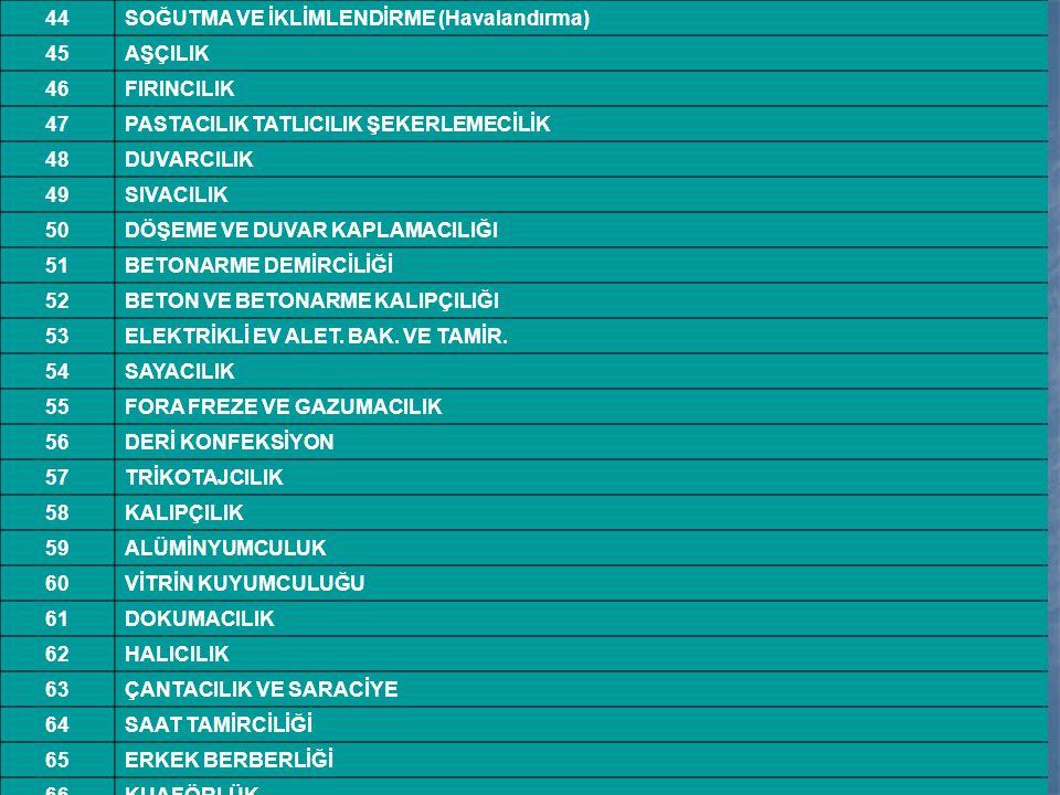 44SOĞUTMA VE İKLİMLENDİRME (Havalandırma) 45AŞÇILIK 46FIRINCILIK 47PASTACILIK TATLICILIK ŞEKERLEMECİLİK 48DUVARCILIK 49SIVACILIK 50DÖŞEME VE DUVAR KAP