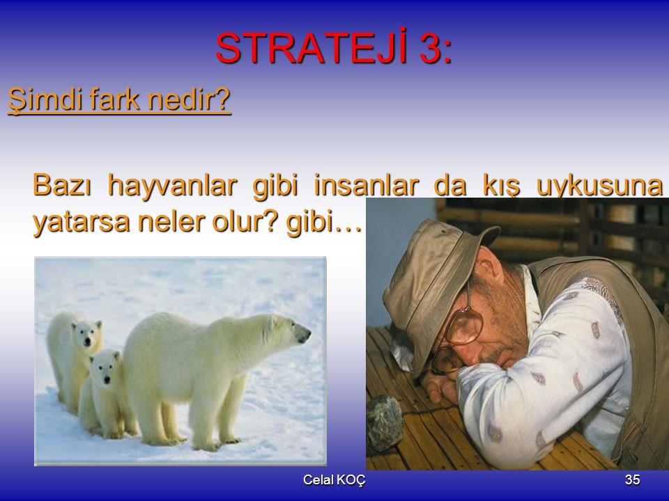 Celal KOÇ35 STRATEJİ 3: Şimdi fark nedir? Bazı hayvanlar gibi insanlar da kış uykusuna yatarsa neler olur? gibi…