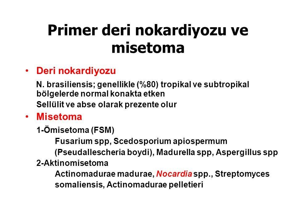 Primer deri nokardiyozu ve misetoma Deri nokardiyozu N.
