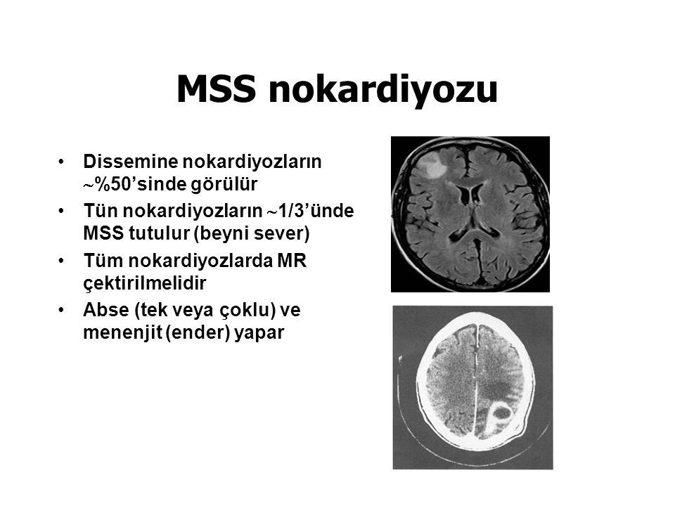 MSS nokardiyozu Dissemine nokardiyozların  %50'sinde görülür Tün nokardiyozların  1/3'ünde MSS tutulur (beyni sever) Tüm nokardiyozlarda MR çektirilmelidir Abse (tek veya çoklu) ve menenjit (ender) yapar
