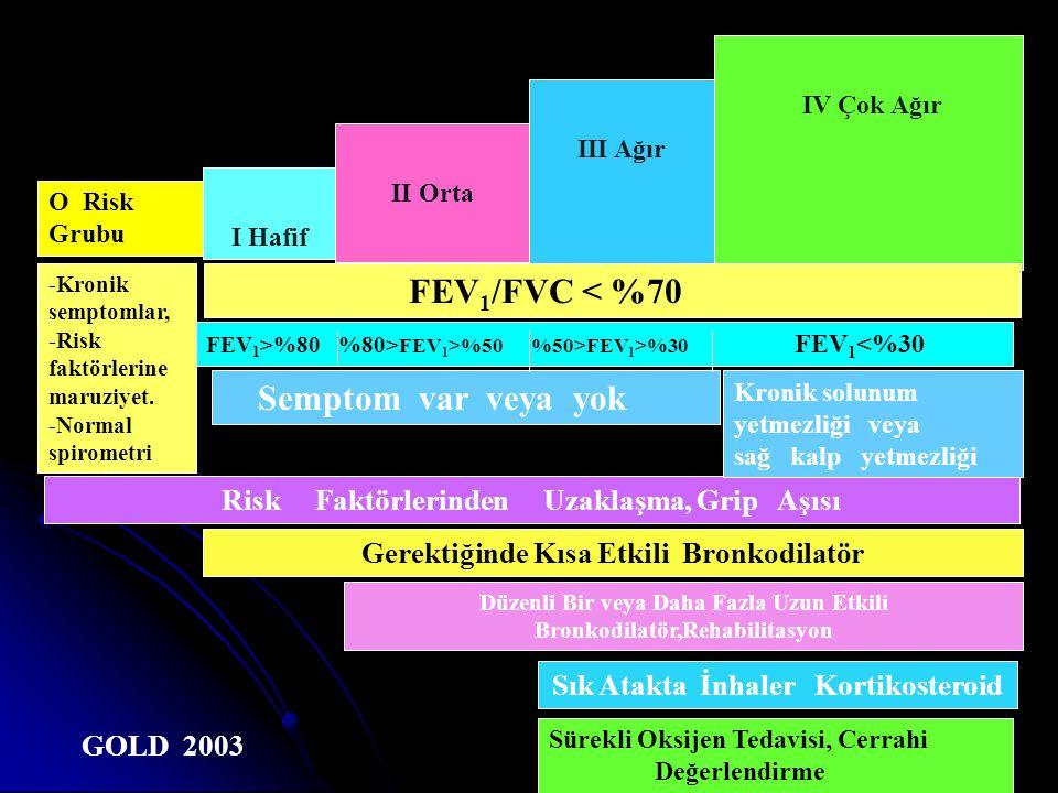 Risk Grubu I Hafif II Orta III Ağır IV Çok Ağır GOLD -Kronik semptomlar, -Risk faktörlerine maruziyet. -Normal spirometri FEV 1 /FVC < %70 FEV 1 ≥%80