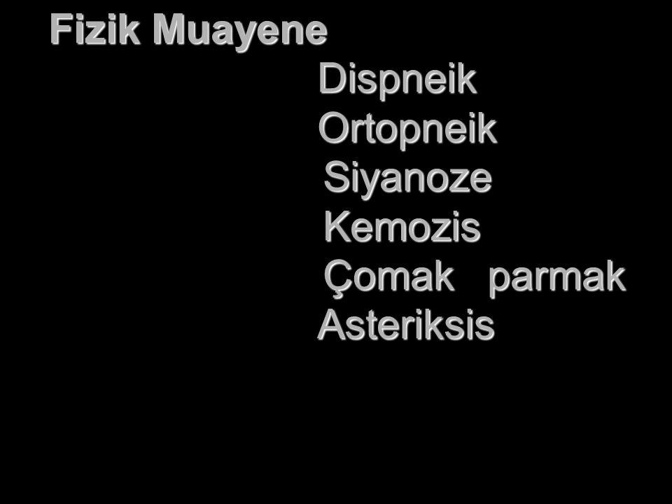 Solunum Sistemi: DSS:28/dk, torakoabdominal.DSS:28/dk, torakoabdominal.