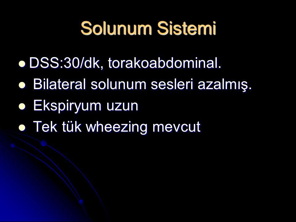 Solunum Sistemi DSS:30/dk, torakoabdominal.DSS:30/dk, torakoabdominal.