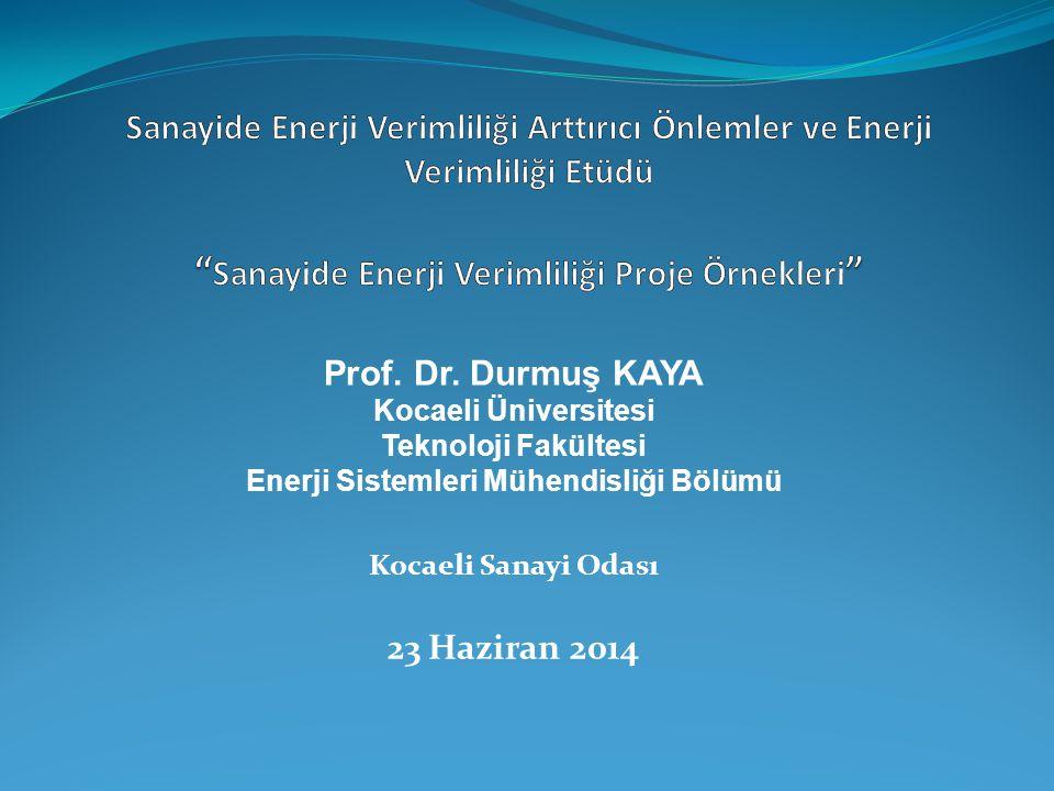 Prof. Dr. Durmuş KAYA Kocaeli Üniversitesi Teknoloji Fakültesi Enerji Sistemleri Mühendisliği Bölümü Kocaeli Sanayi Odası 23 Haziran 2014