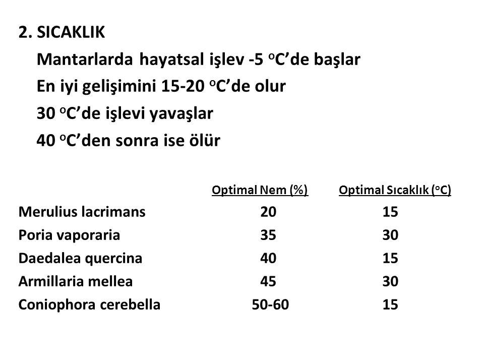 2. SICAKLIK Mantarlarda hayatsal işlev -5 o C'de başlar En iyi gelişimini 15-20 o C'de olur 30 o C'de işlevi yavaşlar 40 o C'den sonra ise ölür Optima