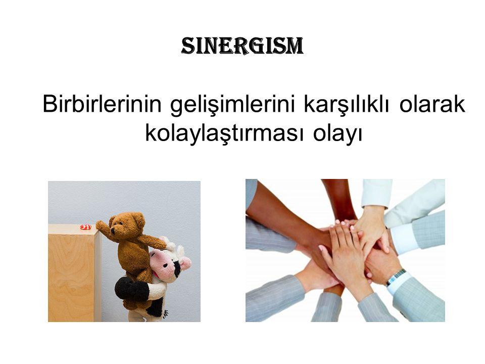 Sinergism Birbirlerinin gelişimlerini karşılıklı olarak kolaylaştırması olayı