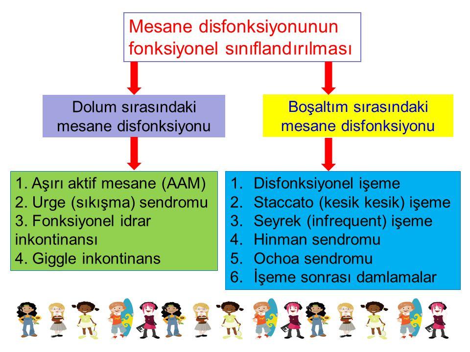 Mesane disfonksiyonunun fonksiyonel sınıflandırılması 1. Aşırı aktif mesane (AAM) 2. Urge (sıkışma) sendromu 3. Fonksiyonel idrar inkontinansı 4. Gigg