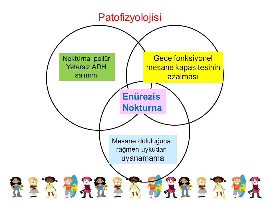 Patofizyolojisi Noktürnal poliüri Yetersiz ADH salınımı Gece fonksiyonel mesane kapasitesinin azalması Mesane doluluğuna rağmen uykudan uyanamama Enür