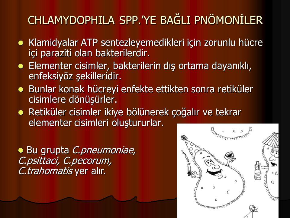 CHLAMYDOPHILA SPP.'YE BAĞLI PNÖMONİLER Klamidyalar ATP sentezleyemedikleri için zorunlu hücre içi paraziti olan bakterilerdir. Klamidyalar ATP sentezl