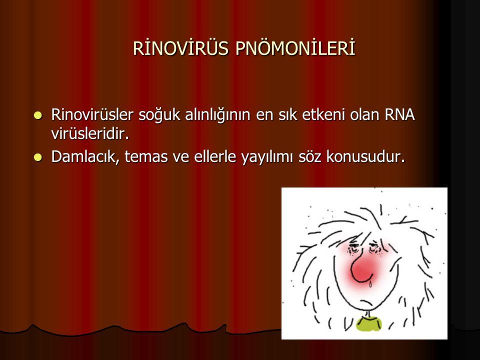 RİNOVİRÜS PNÖMONİLERİ Rinovirüsler soğuk alınlığının en sık etkeni olan RNA virüsleridir. Rinovirüsler soğuk alınlığının en sık etkeni olan RNA virüsl