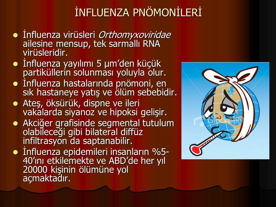 İNFLUENZA PNÖMONİLERİ İnfluenza virüsleri Orthomyxoviridae ailesine mensup, tek sarmallı RNA virüsleridir. İnfluenza virüsleri Orthomyxoviridae ailesi
