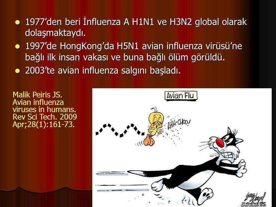 1977'den beri İnfluenza A H1N1 ve H3N2 global olarak dolaşmaktaydı. 1977'den beri İnfluenza A H1N1 ve H3N2 global olarak dolaşmaktaydı. 1997'de HongKo