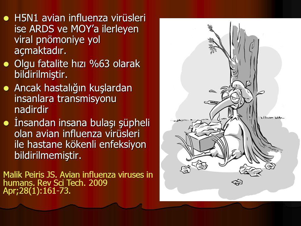 H5N1 avian influenza virüsleri ise ARDS ve MOY'a ilerleyen viral pnömoniye yol açmaktadır. H5N1 avian influenza virüsleri ise ARDS ve MOY'a ilerleyen