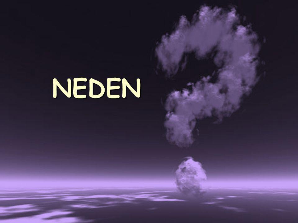 9 NEDEN