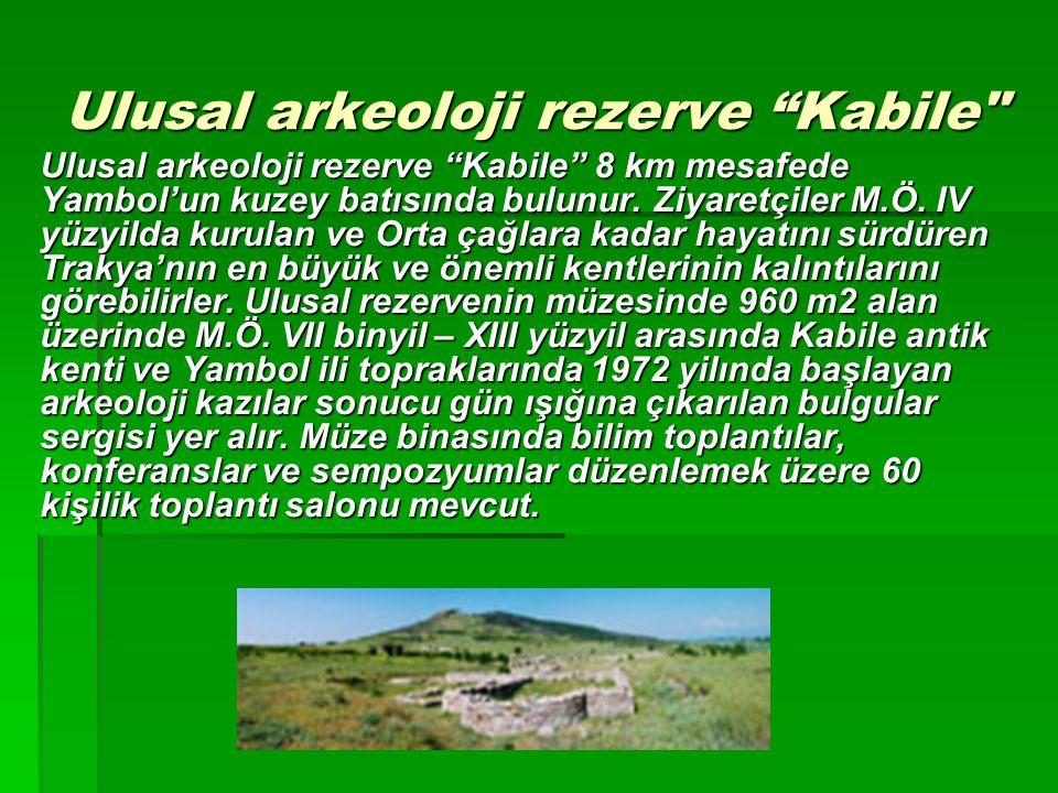 "Ulusal arkeoloji rezerve ""Kabile"