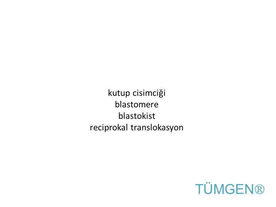 kutup cisimciği blastomere blastokist reciprokal translokasyon TÜMGEN ®
