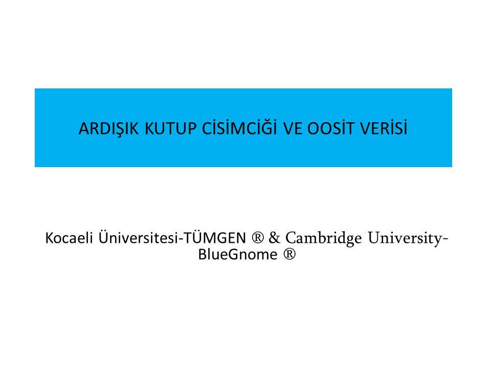 ARDIŞIK KUTUP CİSİMCİĞİ VE OOSİT VERİSİ Kocaeli Üniversitesi-TÜMGEN ® & Cambridge University- BlueGnome ®