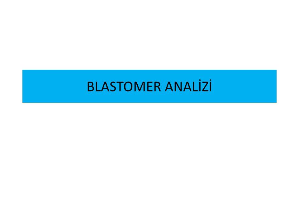 BLASTOMER ANALİZİ
