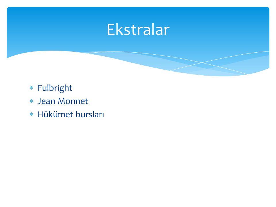  Fulbright  Jean Monnet  Hükümet bursları Ekstralar