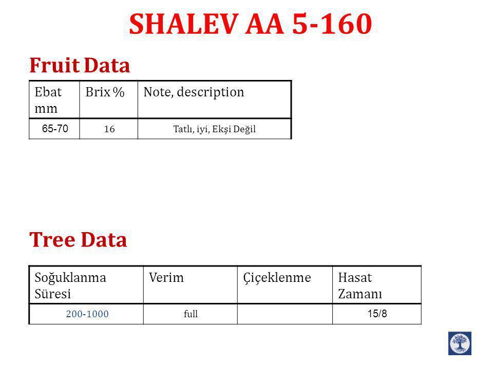SHALEV AA 5-160 Note, descriptionBrix %Ebat mm Tatlı, iyi, Ekşi Değil1665-70 Hasat Zamanı Çiçeklenme VerimSoğuklanma Süresi 15/8full200-1000 Fruit Dat