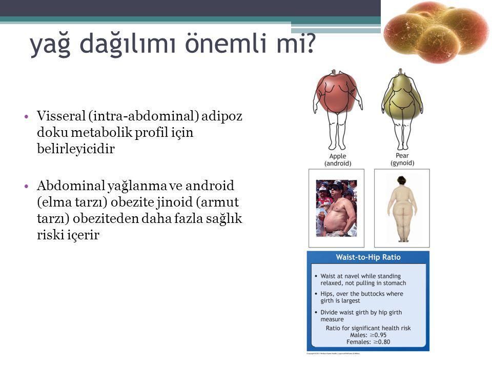 yağ dağılımı önemli mi? Visseral (intra-abdominal) adipoz doku metabolik profil için belirleyicidir Abdominal yağlanma ve android (elma tarzı) obezite