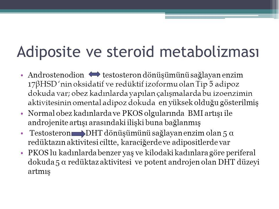 Adiposite ve steroid metabolizması Androstenodion testosteron dönüşümünü sağlayan enzim 17 βHSD 'nin oksidatif ve redüktif izoformu olan Tip 5 adipoz