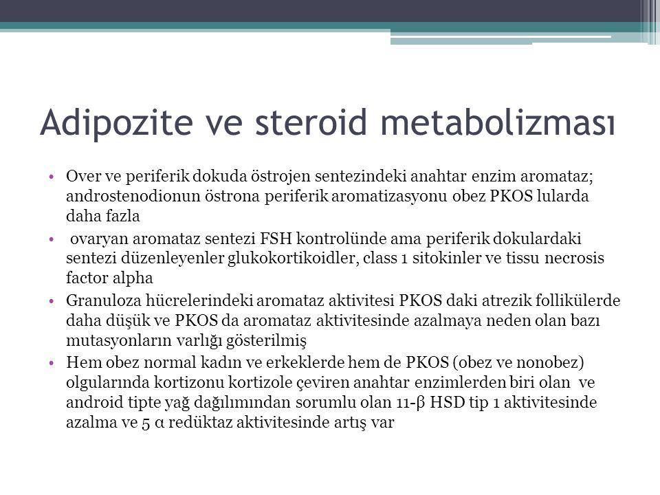 Adipozite ve steroid metabolizması Over ve periferik dokuda östrojen sentezindeki anahtar enzim aromataz; androstenodionun östrona periferik aromatiza