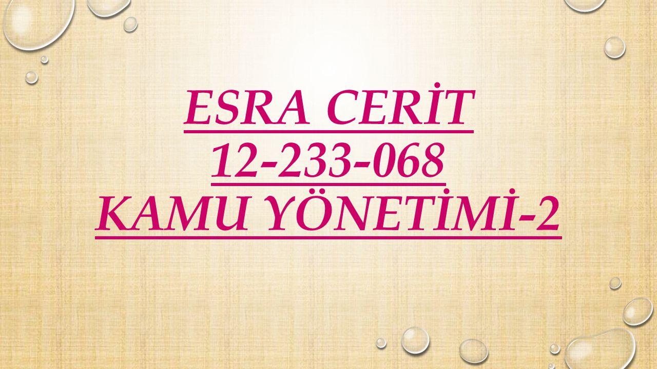 ESRA CERİT 12-233-068 KAMU YÖNETİMİ-2