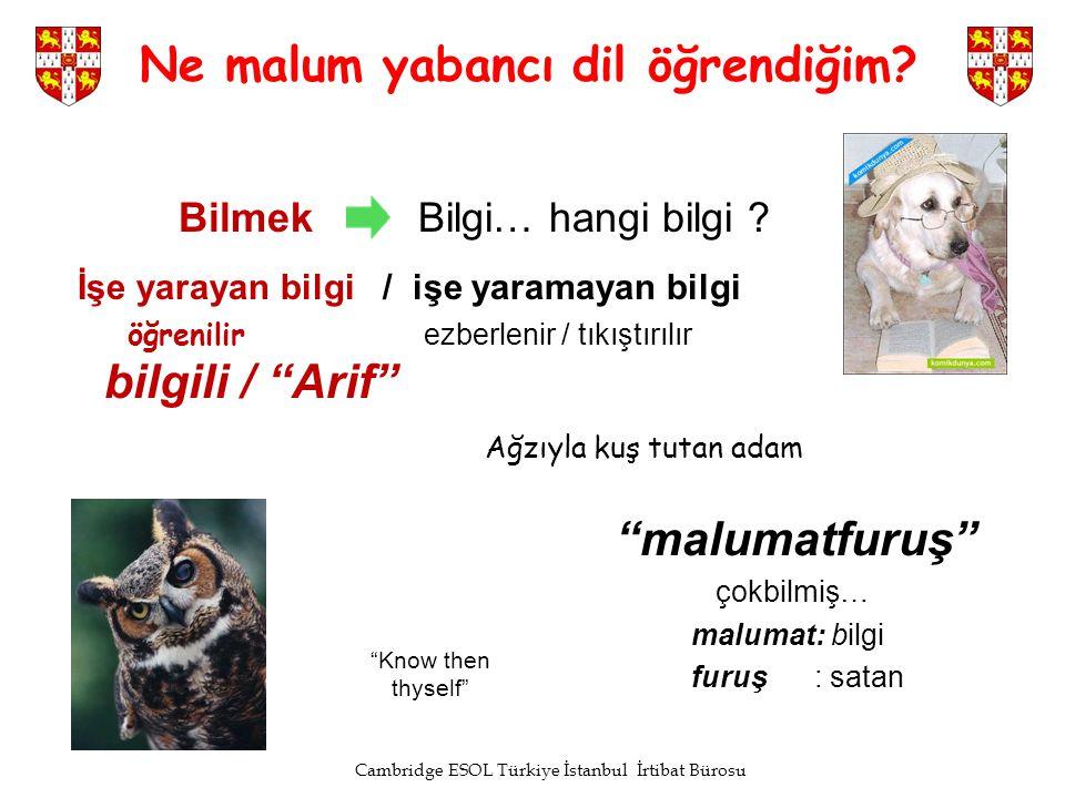 Cambridge ESOL Türkiye İstanbul İrtibat Bürosu Ne malum yabancı dil öğrendiğim? Bilmek Bilgi… hangi bilgi ? İşe yarayan bilgi / işe yaramayan bilgi öğ