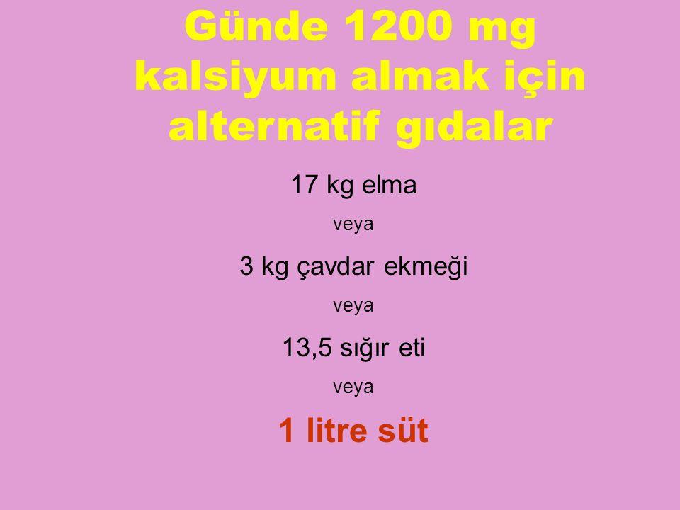 Günde 1200 mg kalsiyum almak için alternatif gıdalar 17 kg elma veya 3 kg çavdar ekmeği veya 13,5 sığır eti veya 1 litre süt