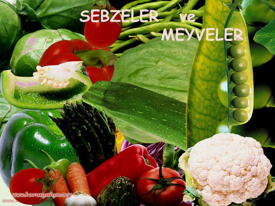 SEBZELER ve MEYVELER 13
