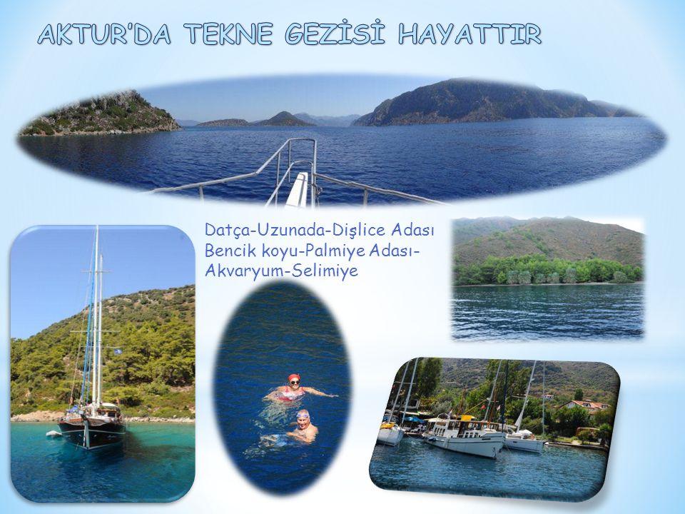 Datça-Uzunada-Dişlice Adası Bencik koyu-Palmiye Adası- Akvaryum-Selimiye