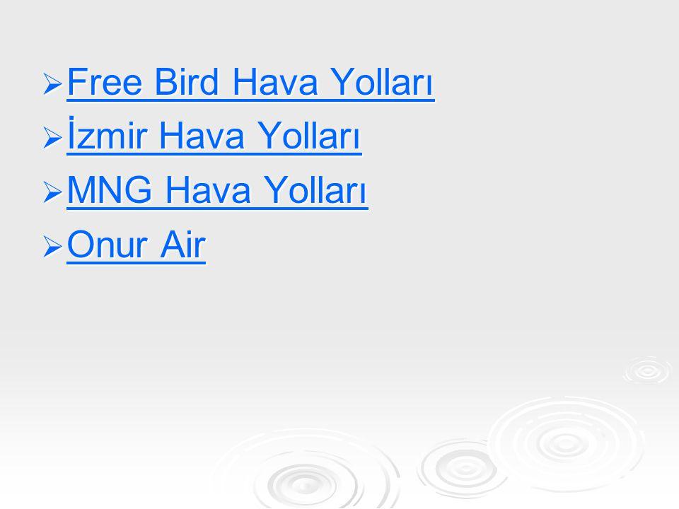 İzmir Hava Yolları İzmir, Türkiye merkezli bölgesel bir havayolu şirketidir.