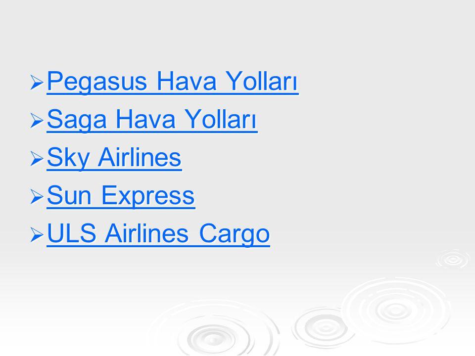 IZair Filosu IZair Filosu Boeing 737-800 2 189 Pegasus Hava Yolları tarafından işletiliyor Boeing 737-800 2 189 Pegasus Hava Yolları tarafından işletiliyor Uçakların ortalama yaşı 6.6 dır.