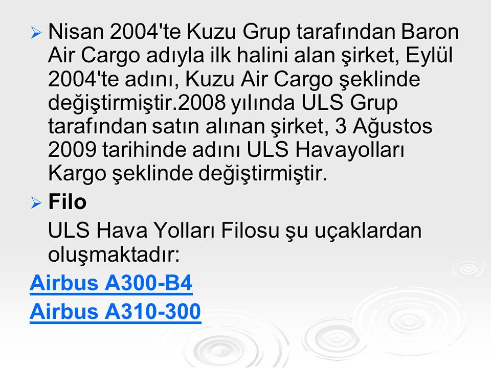  Nisan 2004'te Kuzu Grup tarafından Baron Air Cargo adıyla ilk halini alan şirket, Eylül 2004'te adını, Kuzu Air Cargo şeklinde değiştirmiştir.2008 y