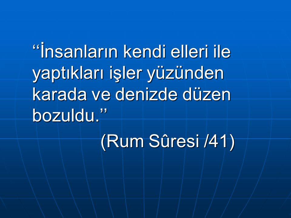 ''İnsanların kendi elleri ile yaptıkları işler yüzünden karada ve denizde düzen bozuldu.'' (Rum Sûresi /41) (Rum Sûresi /41)