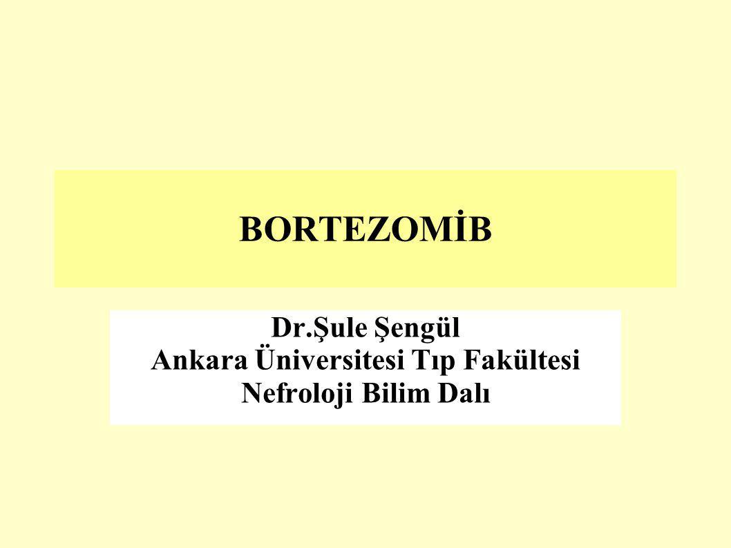 BORTEZOMİB Dr.Şule Şengül Ankara Üniversitesi Tıp Fakültesi Nefroloji Bilim Dalı