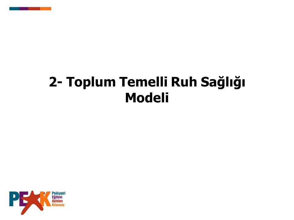 2- Toplum Temelli Ruh Sağlığı Modeli