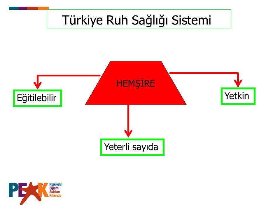 Türkiye Ruh Sağlığı Sistemi HEMŞİRE Eğitilebilir Yeterli sayıda Yetkin