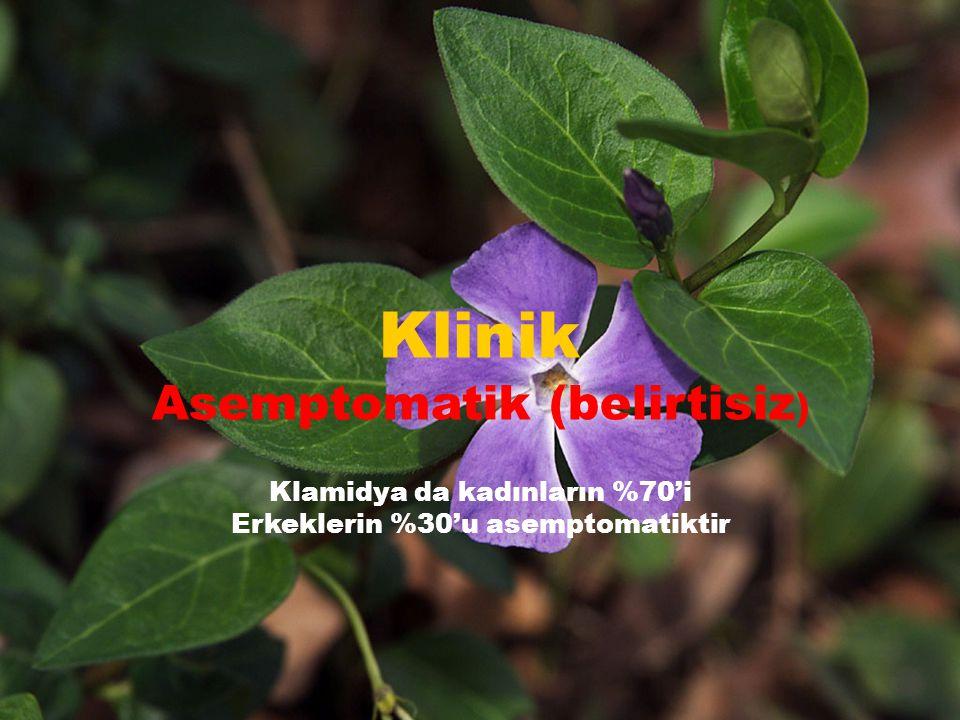 Klinik Asemptomatik (belirtisiz ) Klamidya da kadınların %70'i Erkeklerin %30'u asemptomatiktir