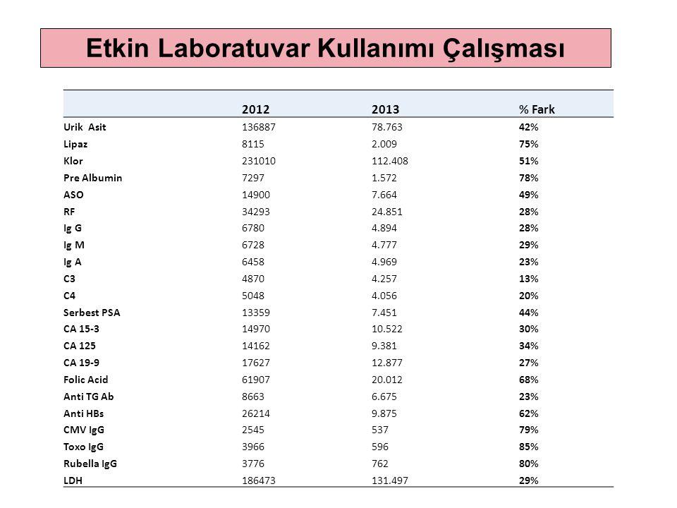 20122013% Fark Urik Asit13688778.76342% Lipaz81152.00975% Klor231010112.40851% Pre Albumin72971.57278% ASO149007.66449% RF3429324.85128% Ig G67804.894