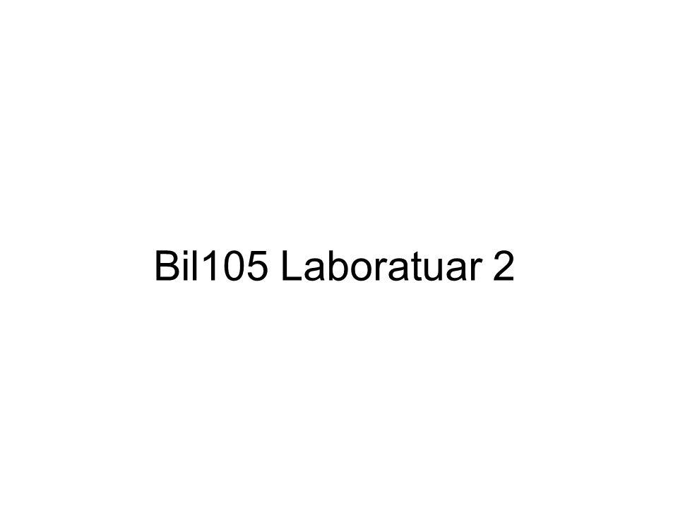 Bil105 Laboratuar 2
