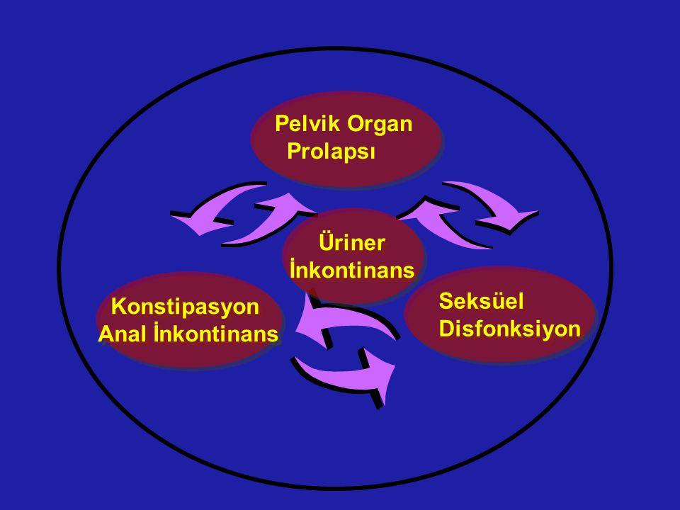 Pelvik Organ Prolapsı Üriner İnkontinans Üriner İnkontinans Konstipasyon Anal İnkontinans Konstipasyon Anal İnkontinans Seksüel Disfonksiyon Seksüel D