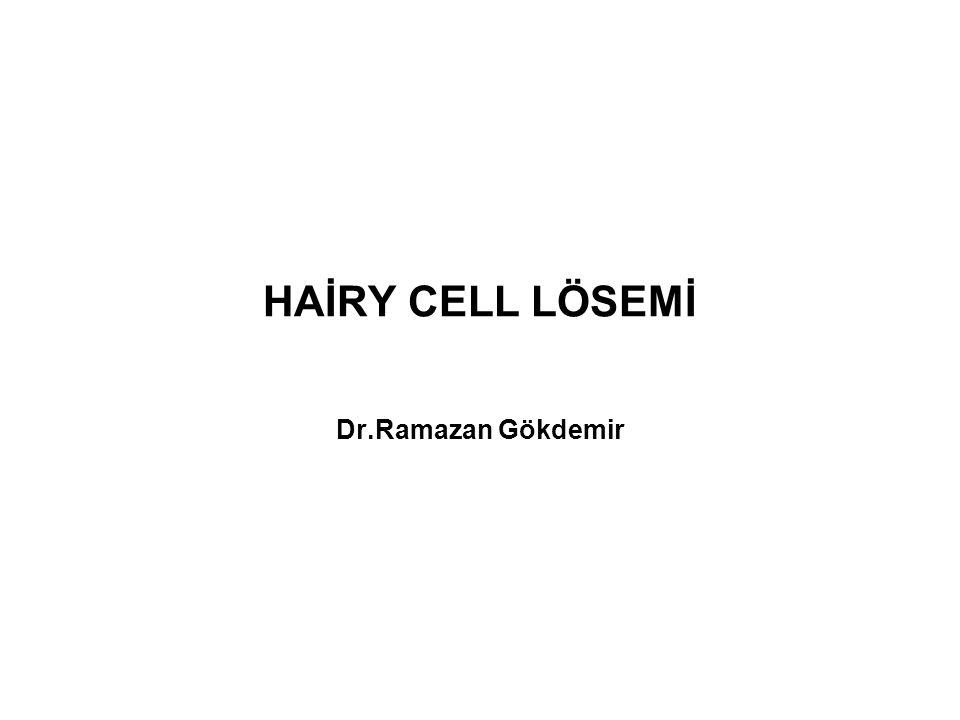 HAİRY CELL LÖSEMİ Dr.Ramazan Gökdemir