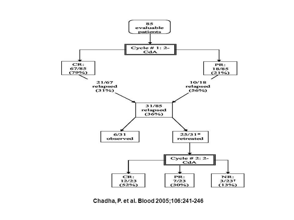 Chadha, P. et al. Blood 2005;106:241-246