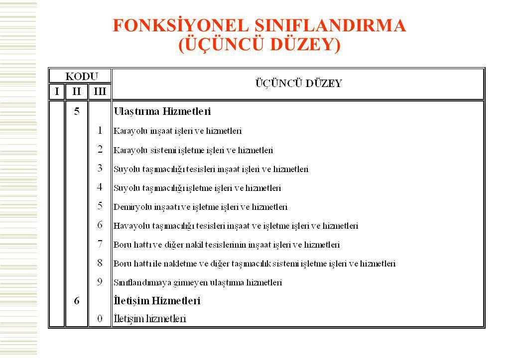 FONKSİYONEL SINIFLANDIRMA (ÜÇÜNCÜ DÜZEY)