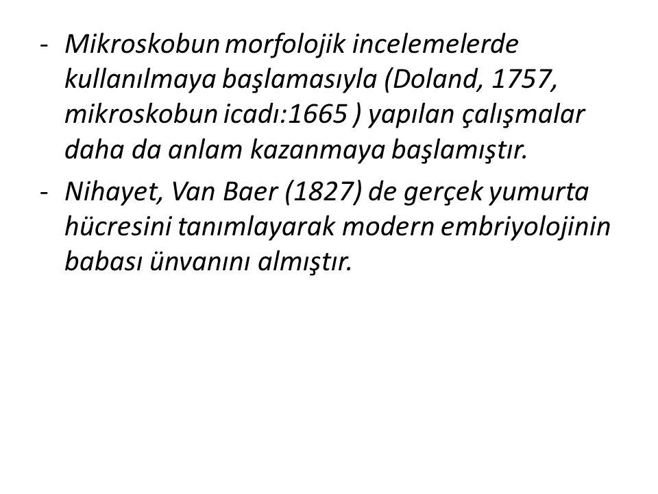 -Mikroskobun morfolojik incelemelerde kullanılmaya başlamasıyla (Doland, 1757, mikroskobun icadı:1665 ) yapılan çalışmalar daha da anlam kazanmaya baş