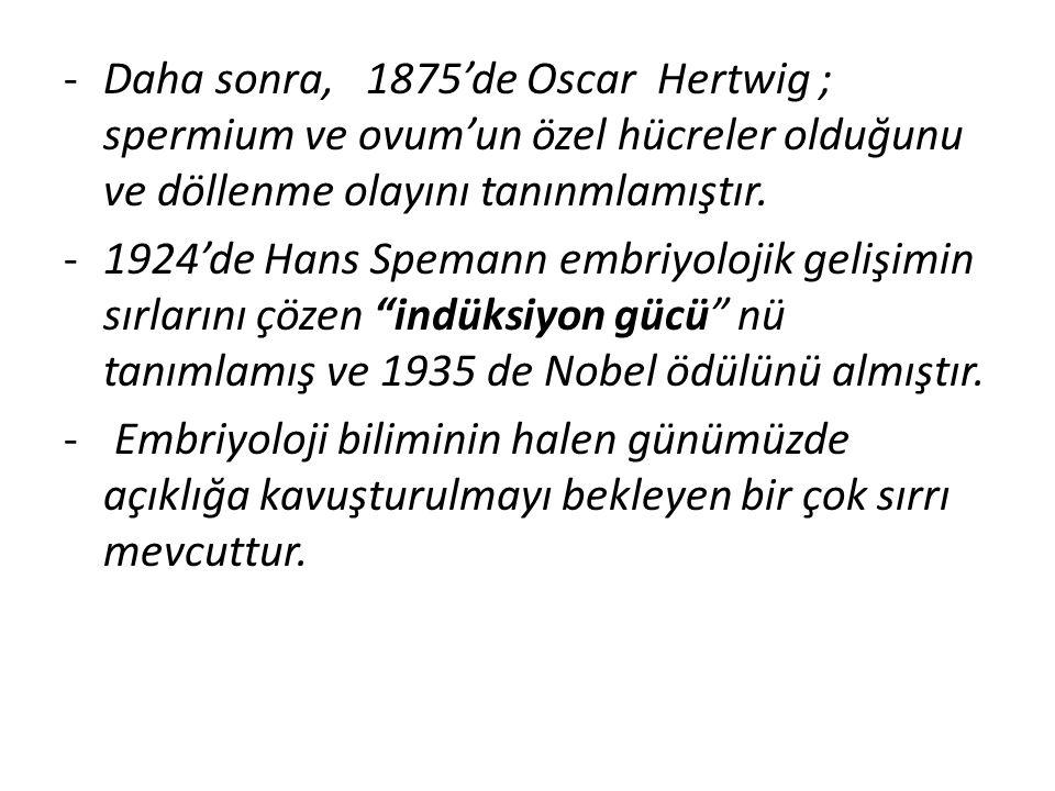 -Daha sonra, 1875'de Oscar Hertwig ; spermium ve ovum'un özel hücreler olduğunu ve döllenme olayını tanınmlamıştır. -1924'de Hans Spemann embriyolojik