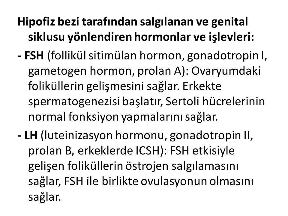 Hipofiz bezi tarafından salgılanan ve genital siklusu yönlendiren hormonlar ve işlevleri: - FSH (follikül sitimülan hormon, gonadotropin I, gametogen