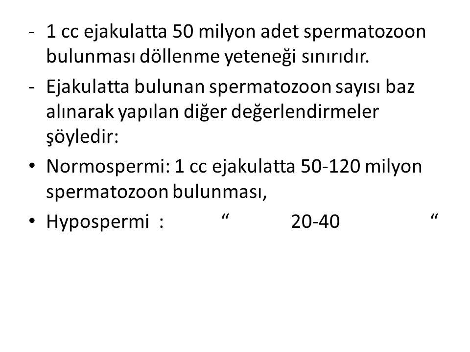 -1 cc ejakulatta 50 milyon adet spermatozoon bulunması döllenme yeteneği sınırıdır. -Ejakulatta bulunan spermatozoon sayısı baz alınarak yapılan diğer
